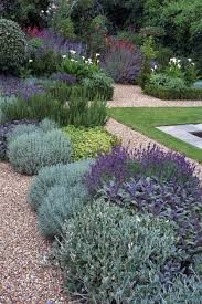 Low Maintenance Garden Ideas Sun Low Maintenance Drought Tolerant Plants By Ingrid