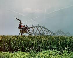 irrigated corn how center pivot irrigation helps my family s farm minnesota corn