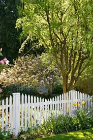 17 best fence inspiration images on pinterest white picket