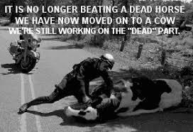Beating A Dead Horse Meme - beating a dead horse texags
