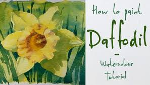 how to paint a daffodil flower watercolour tutorial youtube