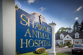 shawme animal hospital veterinarian in sandwich ma usa home