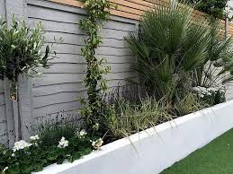 Planting Ideas For Small Gardens Render Walls Planting Small Garden Design Painted Fence