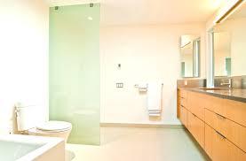 mid century modern bathroom lighting best interior glass block