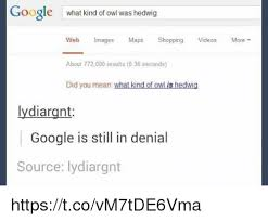 Google Did You Mean Meme - 25 best memes about did you mean did you mean memes