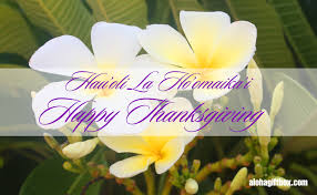 hawaii happy thanksgiving card with tropical white plumeria