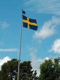 Sweedish Flag Swedish Midsummer Svensk Midsommar Gullringstorpgoatsblog
