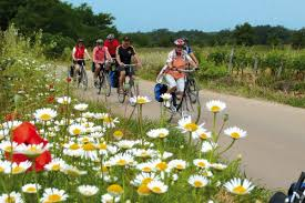 tours with electric bikes learn about e bikes and search tours