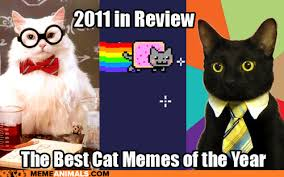 Business Cat Memes - introducing our newest site meme animals cheezburger company blog