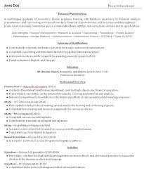 Summary Resume Sample by Summary Resume 16227