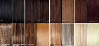 xtras hair extensions human hair extension colour matching chart