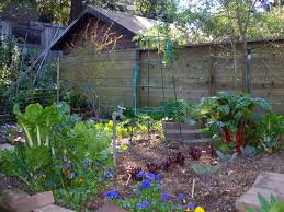 Small Kitchen Garden Ideas by Small Backyard Veggie Garden Quick And Simple Small Vegetable