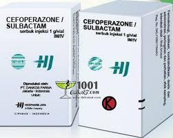 Obat Q Cef cefoperazone sulbactam 1001 daftar katalog obat