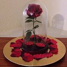 rose in glass amazon com enchanted rose in glass dome inspired by beauty the