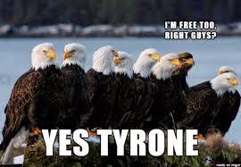Freedom Eagle Meme - freedom eagle funny eagle best of the funny meme