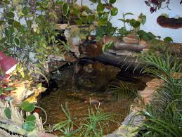 exteriors small backyard ponds and waterfalls ideas outdoor fish