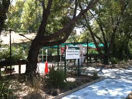 native plant nursery melbourne greenlink community nursery melbourne