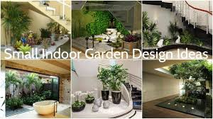 small indoor garden collection of the best design ideas