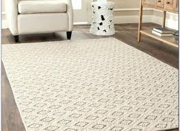 6 X 9 Area Rugs Wonderful 6 X 9 Rug Classof Co