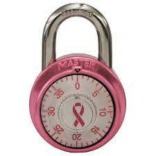 model no 1530dpnk master lock