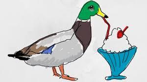Meme Duck - milkshake duck know your meme