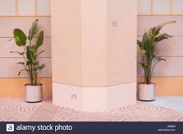 Plants Indoors by Green Potted Plants Indoors On A White Wall Stock Photo Royalty