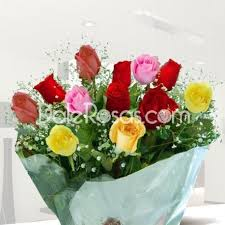 multicolored roses flowers to medellin florists in medellin colombia dalerosas