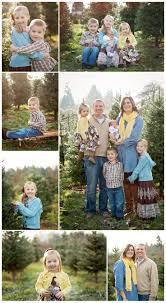 christmas tree farms dayton ohio christmas lights decoration