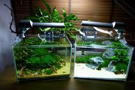 Aquascaping Shop The Planted Aquarium Store Workshop Nano Tank Aquascaping