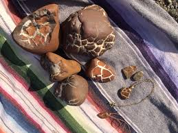 collectible rocks of southwest lake michigan beaches mlive com