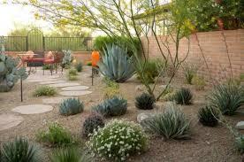 Desert Backyard Ideas Backyard Desert Landscaping Desert Landscaping For Your Yard In