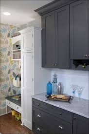 White Cabinets Dark Grey Countertops Dark Grey Kitchen Walls Best 25 Dark Kitchens Ideas On Pinterest
