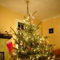 live trees decorated delivered decore
