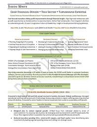 Sample Cfo Resume by The 25 Best Executive Resume Ideas On Pinterest Executive