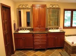 Bathroom Countertop Storage Storage Bathroom Counter Storage Plus Bathroom Countertop