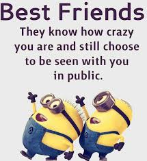 30 funny minions friendship quotes quotes humor