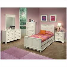 Girls White Twin Bed Bedroom Wonderful Kids Twin Bedroom Set Rooms To Go Twin Bed