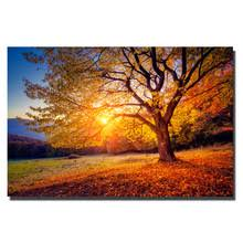 Posters For Living Room by Popular Large Scenery Posters Buy Cheap Large Scenery Posters Lots