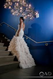 photographers in miami artistic vision design capturing your vision one frame at a