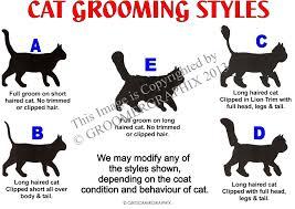 Dog Grooming Styles Haircuts Cat Style Chart U2014 Groomergraphix
