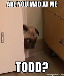 Are You Mad At Me Meme - are you mad at me todd roger magoo meme generator