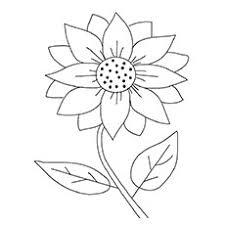 Sunflower Coloring Page 15 Beautiful Sunflower Coloring Pages For Your Little Girl