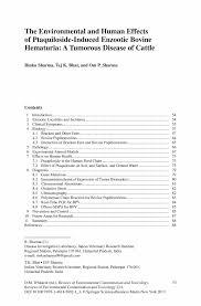 Best Sample Resume 100 Sample Resume Ma English Communication Essay Example
