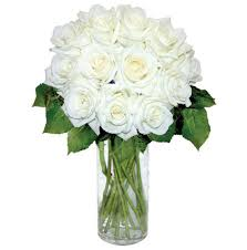 Long Stem Roses White Long Stem Roses White Roses Arttowngifts Com