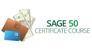 sage 50 accounting training program vision training systems