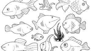 tropical beach coloring pages fish coloring pages fish coloring pages stunning printable fish