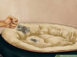 how to clean cat beds 11 steps with pictures wikihow