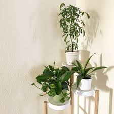 plant stand house plant stand plans indoor corner stands with