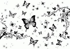 black and white butterfly pattern vector graphics my free