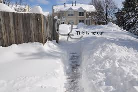 Shoveling Snow Meme - hey harriet do you have a snow blower i can borrow twobarkingdogs